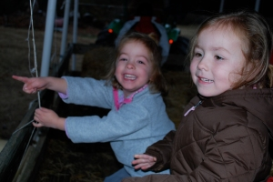 Molly and Ruby loving the tractor ride