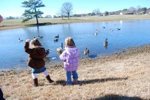 Ruby throwing food to the geese